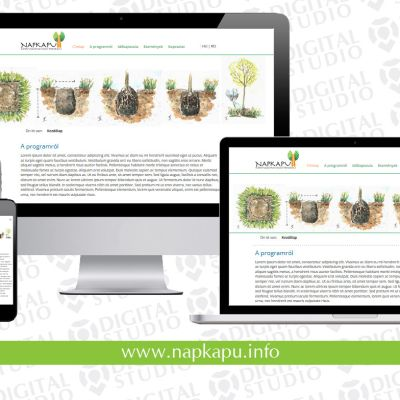 A Napkapu környezetnevelési program weboldala