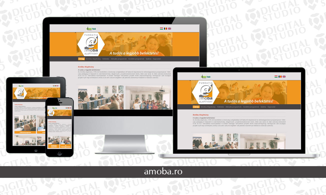 amoba.ro - design si dezvoltare website Digital Studio